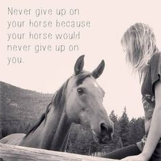 They keep trying  | 13 Quotes: What Horse Riding Teaches You About Life