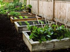 How to Build and Install Raised Garden Beds by Popular Mechanics: Well suited to novices, raised gardens allow you to customize the soil bed and maximize the use of space by setting plants closer together and increasing yield while decreasing water usage and crowding out weeds. The raised bed improves the warmth of the bed due to increased sun exposure, improves drainage, and best of all, saves your back! #Gardeni