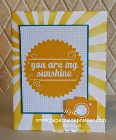 Playground PL kit 50% off while supplies last! Http://papermadeprettier.stampinup.net to order.  click here to see how to make 5 simple cards with Project Life by Stampin' Up's Playground card collection and accessory kit and the Age Awareness Stamp Set!  It's a Playground Party on my blog!  #stampinup #projectlife #plxsu