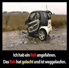 #lustig #sprüche #humor