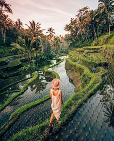 One of the many things to do in Bali. Add these Bali rice fields to your bucket list today. Travel Photography Tumblr, Photography Beach, Landscape Photography, Photography Ideas, Voyage Bali, Destination Voyage, Unique Honeymoon Destinations, Travel Destinations, Bali Honeymoon