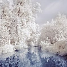 Beautiful Winter Scenery #scenery http://pinterest.com/ahaishopping/