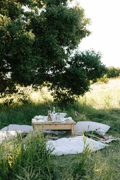 Picnic Dinner, Picnic Time, Summer Picnic, Outdoor Rooms, Outdoor Living, Outdoor Furniture Sets, Outdoor Decor, Outdoor Showers, Camping Guide