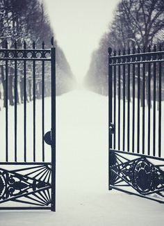 Welcome to my winter wonderland