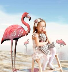 SUSU Flamingo Photography Backgrounds Scenic Sea Photo Backdrop Environmental Protection Material or for Romantic Love Background Background For Photography, Photography Backgrounds, Beach Backdrop, Love Backgrounds, Thing 1, Sea Photo, Natural Scenery, Romantic Love, Summer Beach