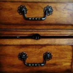 Cat inside the drawer...they'll never see, me....