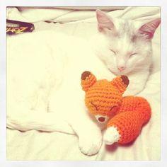 An adorable fox amigurumi