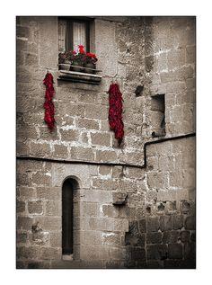 Tradiciones de la tierra del vino  Rioja