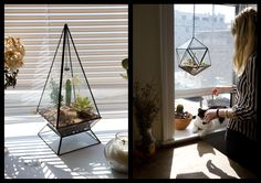 Score + Solder  terrariums and more