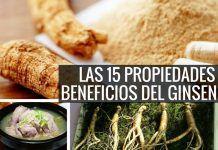 Las 15 Propiedades y Beneficios del Ginseng