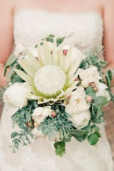 I have to send out a big fat thank you to the wedding world for introducing me to protea. These gorgeous, statuesque botanical beauties have been popping up in the most chicest of weddings and this romantically modern Fremantle fête is Protea Wedding, Vintage Wedding Flowers, Blush Wedding Flowers, Winter Wedding Flowers, Wedding Flower Decorations, Flower Bouquet Wedding, Bridal Bouquets, Purple Bouquets, Flowers Decoration