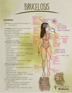Pregnant Nurse, Med Lab, Nurse Love, Study Techniques, Medical Anatomy, Body Figure, Acupressure Points, Med School, Medical School