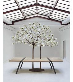 The PI Table by Roderick Fry was presented to the Sustainable Luxury Event in Paris. Oak Table, Dining Table, Tree Table, Patio Interior, Interior Design, Table Furniture, Furniture Design, Plafond Design, Meeting Table