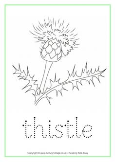 Trace the word and colour in the picture - a fun worksheet to print out and fill in for your Scotland theme, perhaps! Burns Night Activities, Burns Night Crafts, Scotland Map, Scotland History, Uk History, Traditional Scottish Food, Scottish Culture, Charts For Kids, Tracing Worksheets
