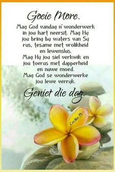Good Night Quotes, Good Morning Good Night, Good Morning Wishes, Monday Blessings, Morning Blessings, Lekker Dag, Evening Greetings, Afrikaanse Quotes, Goeie More