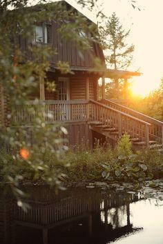 gorgeous cabin - Bodega Ridge!