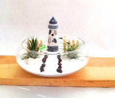 Miniature Beach Terrarium with Lighthouse by myminiaturegarden Air Plant Terrarium, Garden Terrarium, Terrarium Ideas, Terrariums, Beach Fairy Garden, Little Gardens, Beach Gardens, Fairy Garden Accessories, Beach Crafts