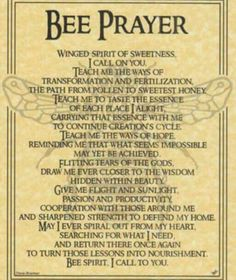 Bee Prayer... from Demis book.
