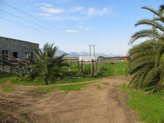 Vegetable Farming, Livestock, Westerns, Cape, Country Roads, Pictures, Mantle, Photos, Cabo
