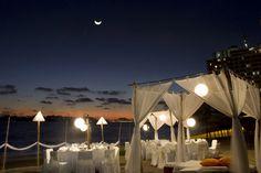 Banquete nocturno en la playa