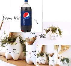 Cute cat plant containers.