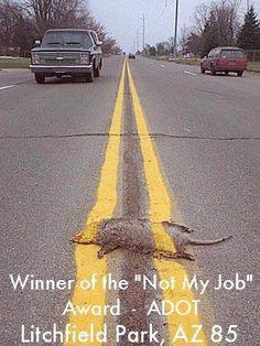 Random Pic: Winner of not my job award