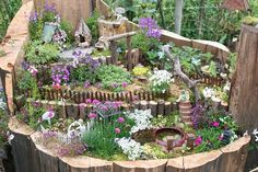 Village in a stump(?). Lovely use of flowers