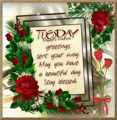 Tuesday Greetings. Stay Blessed.
