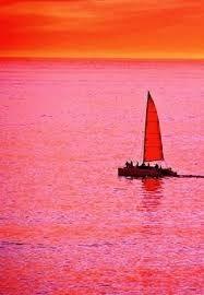 Resultado de imagen para pink and orange color