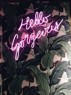 GORG | They All Hate Us | Bloglovin'