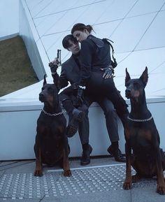 Doberman Pinscher Puppy, Doberman Dogs, Dobermans, Badass Aesthetic, Bad Girl Aesthetic, Gangsters, Super Cute Animals, Levi X Eren, Cool Girl Pictures