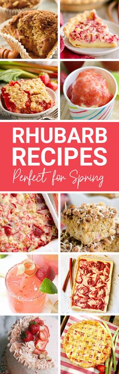 Spring is here and there is no better time to make these amazing rhubarb recipes including pies, bars, jams, drinks and cocktails! Rhubarb Recipes, Jam Recipes, Beef Recipes, Dinner Recipes, Cooking Recipes, Vegetarian Recipes, Spring Desserts, Summer Dessert Recipes, Kid Desserts