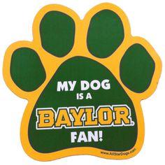 """My Dog is a Baylor Fan!"" car magnet"