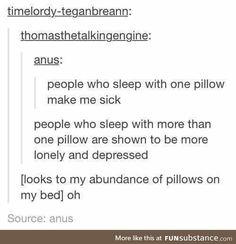 I sleep with my pillow, my body pillow, another pillow and three other pillows around my feet As long as I have at least one extra pillow that I can hug I'm okay with everything My Tumblr, Tumblr Posts, Tumblr Funny, Funny Quotes, Funny Memes, Hilarious, Jokes, I Can Relate, Text Posts