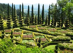 Newton Vineyard's formal English parterre garden overlooking St. Helena. A whimsical outer border of corkscrew juniper topiary spires and pencil-thin distant Italian cypress trees add vertical interest to this unique sculptured garden planted atop an underground wine cellar. Via Northern California Gardens.