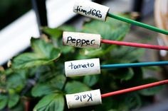 Plant Markers for you Garden  Don't let plastic plant tags ruin your outdoor decor. Make these garden markers using wine corks and chopsticks. Chic and eco-friendly.  Tutorial: allputtogether.com