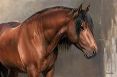 Horse painting by Carolle Beaudry. Horse Drawings, Animal Drawings, Arte Equina, Animal Paintings, Horse Paintings, Horse Artwork, Most Beautiful Horses, Horse Portrait, Equine Art
