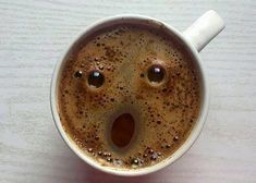 Even You Coffee Is Amazed That You Are Awake This Early - Funny Animal Pictures With Captions - Very Funny Cats - Cute Kitty Cat - Wild Animals - Dogs If you think my coffee is surprised, you should see my face! A laugh. Funny Animal Pictures, Funny Images, Funniest Pictures, Quotes Images, Funny Cats, Funny Animals, Wild Animals, Very Funny, Crazy Funny