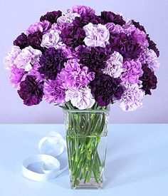 light & dark purple carnations