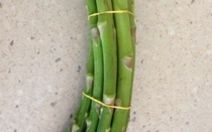 Fresh Asparagus From WA Review