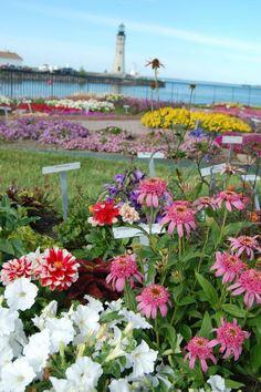 The Gardens at the Erie Basin Marina
