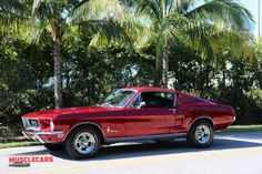 Ford Mustang 1969, Ford Mustang Fastback, Mustang Cars, Classic Mustang, Ford Classic Cars, American Muscle Cars, Sexy Cars, Cars And Motorcycles, Vintage Cars