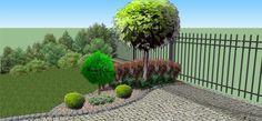Zielony ogród - Ogród przed domem w Białogardzie