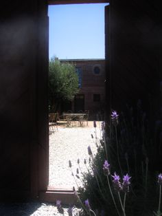 beautiful courtyard entrance by patricia malmierca landscape arch