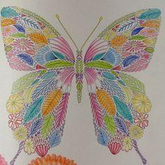 Millie Marotta, butterfly, vlinder, coloring, kleuren, watercolours, pastels