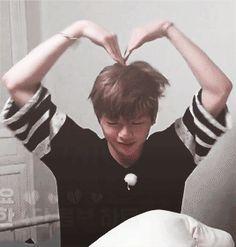 wanna one kang daniel gif Kang Daniel Produce 101, Boys Who, My Boys, Daniel Day, Produce 101 Season 2, Kim Jaehwan, Ha Sungwoon, Fandom, Kpop