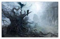 The Witcher wallpaper Fantasy Forest, Dark Forest, Fantasy Art, Fantasy Story, Witcher Art, The Witcher, Witcher Wallpaper, Gothic Garden, Forest Wallpaper