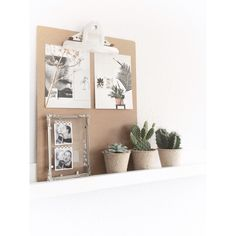 Gratis kaartjes van vt wonen op een klembord met cactussen in goedkope kweekpotjes en een oud fotolijstje van overgroot oma. Lekker low budget! IG @mmmmmmanon