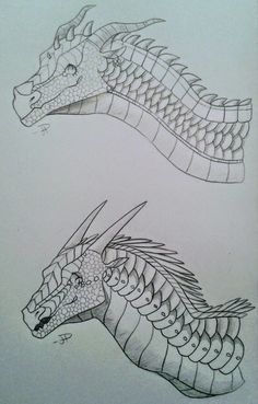 my homies from school asked me to draw them as dragons frands Dragon Head Drawing, Dragon Art, Dragon Drawings, Wings Of Fire Dragons, Got Dragons, Fantasy Creatures, Mythical Creatures, Dont Touch My Phone Wallpapers, Animal Drawings