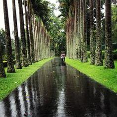 Das Foto wurde bei Royal Botanic Gardens von 3bdullah_Th am 6/1/2013 aufgenommen